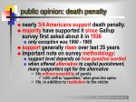 public opinion death penalty