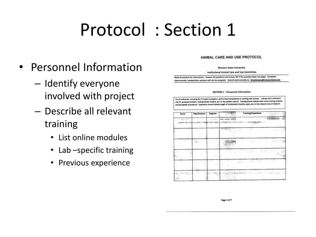 Protocol  : Section 1