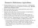 extensive subsistence agriculture