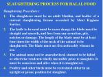 slaughtering process for halal food11