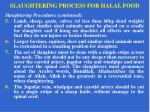 slaughtering process for halal food12