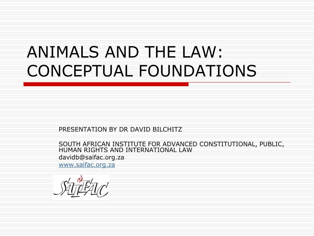 animals and the law conceptual foundations l.