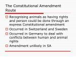 the constitutional amendment route