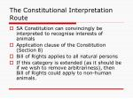 the constitutional interpretation route