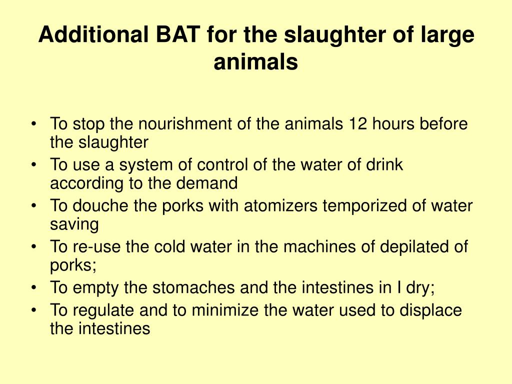 Additional BAT for the slaughter of large animals