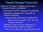faunal changes preserved