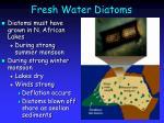 fresh water diatoms