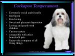 cockapoo temperament