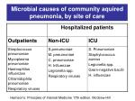 microbial causes of community aquired pneumonia by site of care