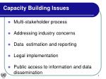 capacity building issues