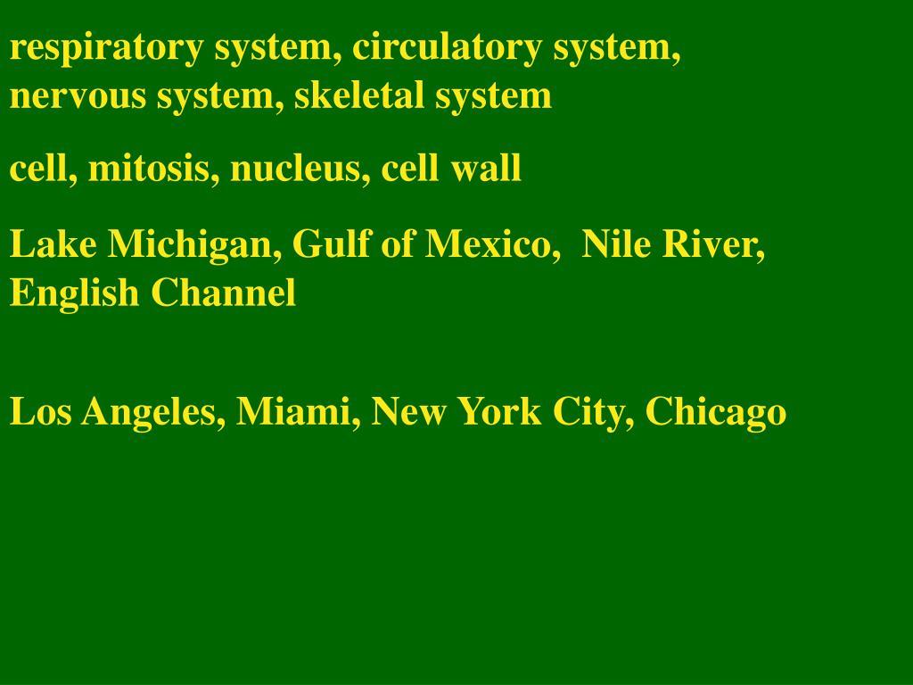 respiratory system, circulatory system, nervous system, skeletal system