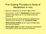 five guiding principles to study of metabolism in vivo