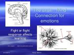 the brain mind connection for emotions