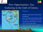 new opportunities gas gathering in the gulf of guinea