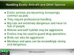 handling exotic animals and other species