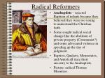 radical reformers