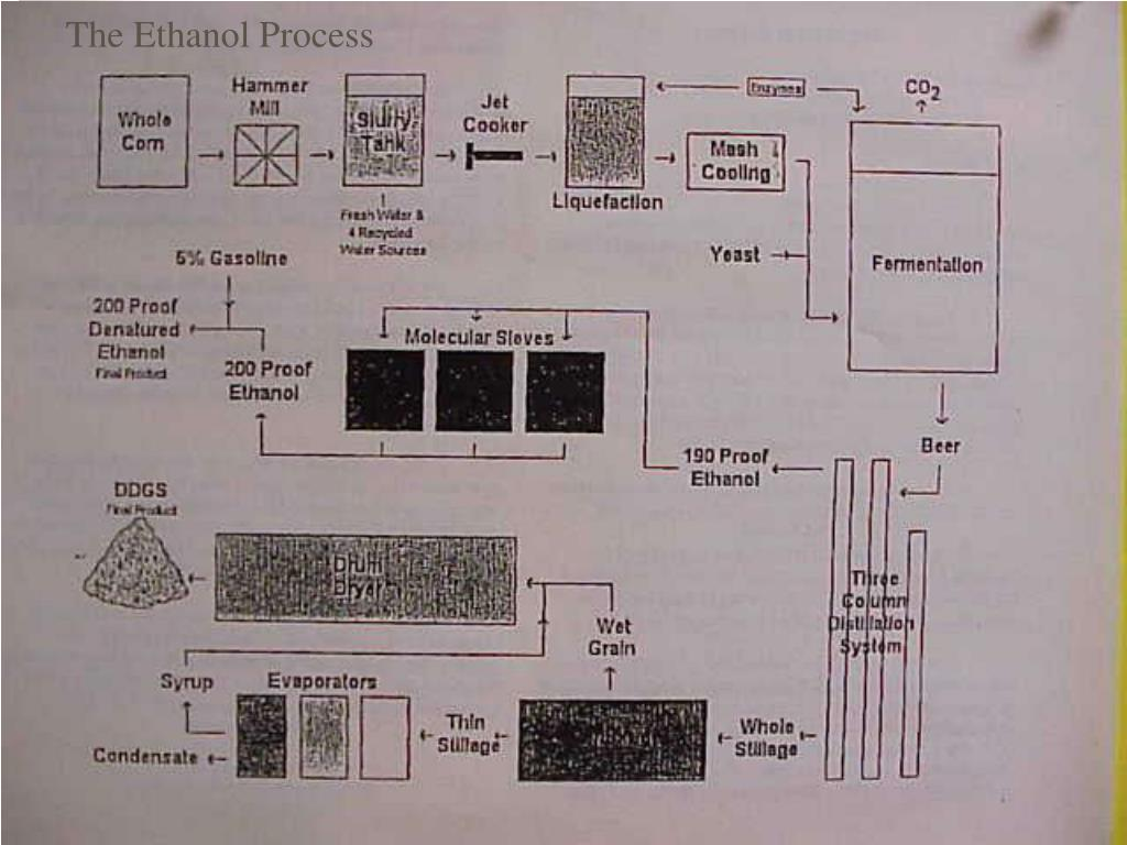 The Ethanol Process