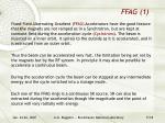 ffag 1