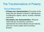 the transformations of puberty18