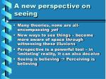 a new perspective on seeing