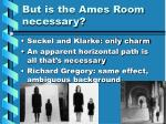 but is the ames room necessary
