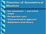 theories of geometrical illusions