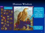 human wisdom