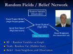 random fields belief network