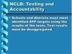 nclb testing and accountability7