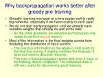 why backpropagation works better after greedy pre training