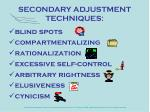 secondary adjustment techniques