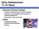 early adolescence 11 14 years