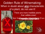 golden rule of winemaking when in doubt about any characteristic of a plant do not use it