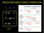 regulating gene target interaction
