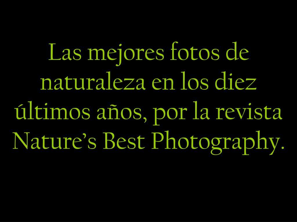 las mejores fotos de naturaleza en los diez ltimos a os por la revista nature s best photography l.