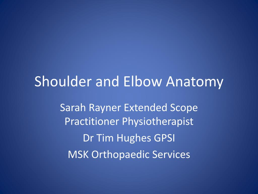 shoulder and elbow anatomy l.
