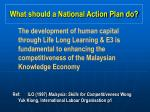 what should a national action plan do