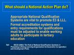 what should a national action plan do24