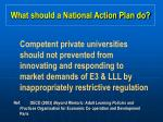 what should a national action plan do27