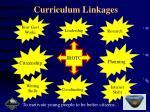 curriculum linkages