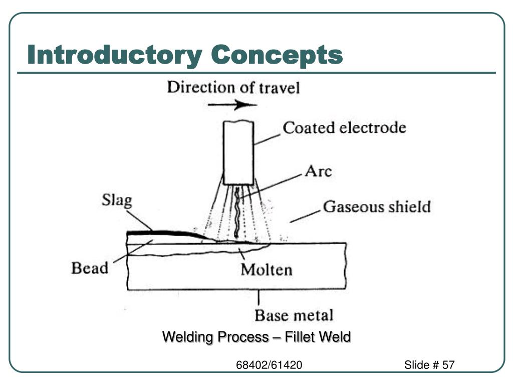 Introductory Concepts