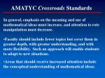 amatyc crossroads standards