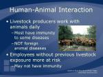 human animal interaction9