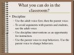 what you can do in the classroom
