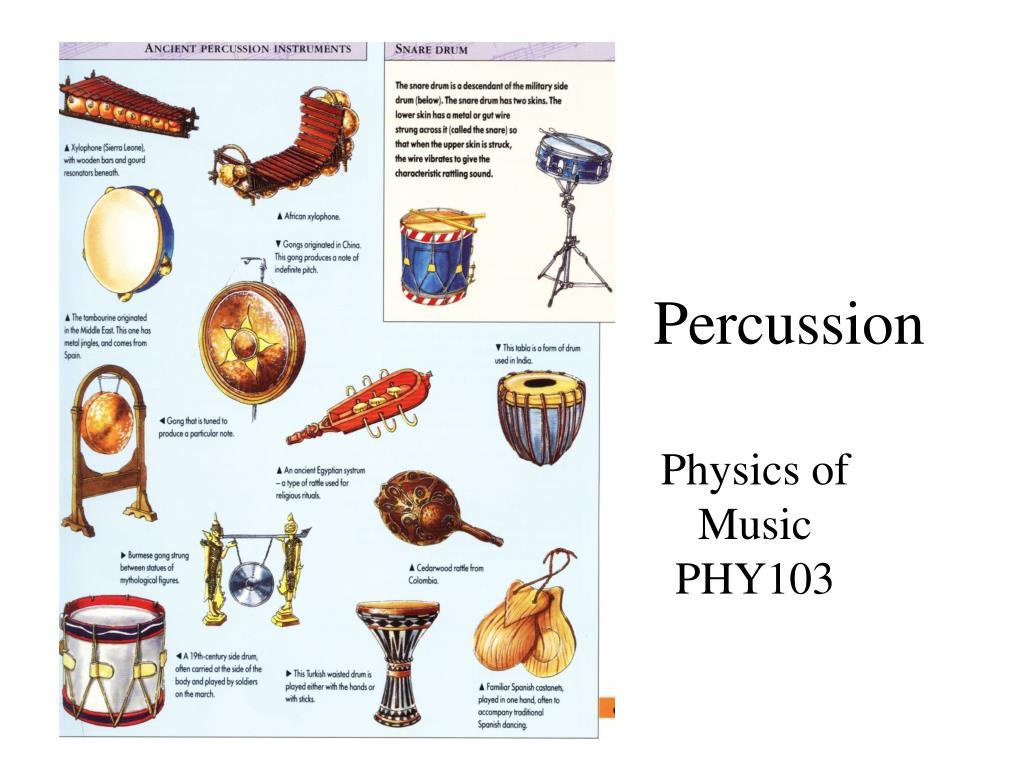 percussion l.