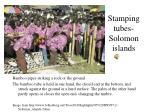 stamping tubes solomon islands