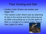 their hunting and diet