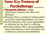some key features of psychotherapy