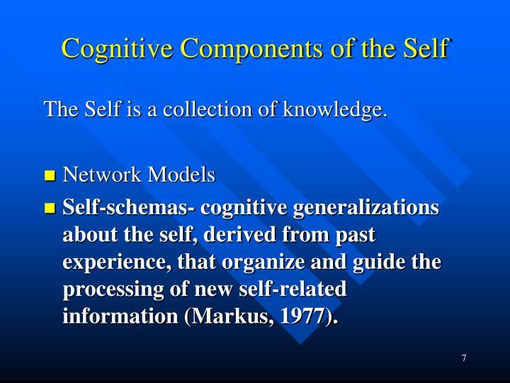define self schema