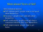 motivational views of self